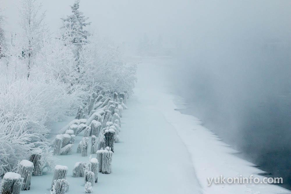 yukon-info-whitehorse-winter-6668
