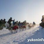 2015-yukon-quest-start-IMG_6742